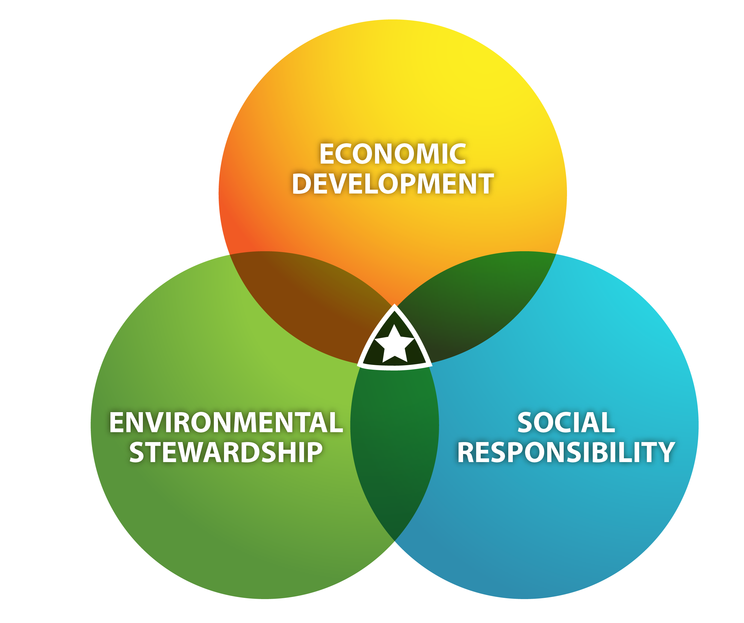sustainability and the triple bottom line It is our argument in this chapter that the triple bottom line is a facile concept which has been used to imply that sustainability and sustainable development are simple targets to achieve we have argued elsewhere (see for example aras & crowther, 2008a, 2009b) that the brundtland definition of sustainable development is misleading.